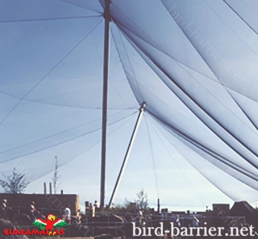 Protect your aviary with bird control.