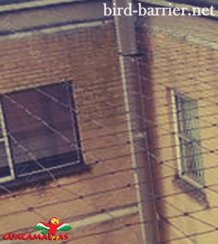 GUACAMALLAS anti bird net is the most effective method to protect your buildings.