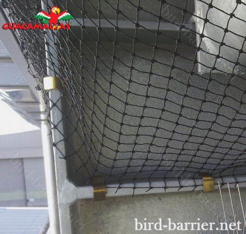 Nothing works as plastic nets when it comes to controlling urban pigeons.