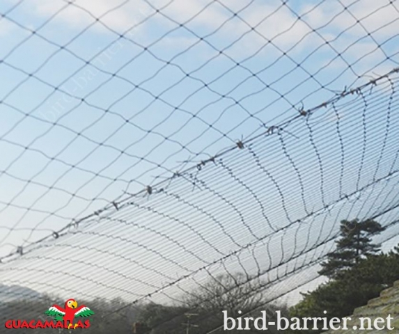 Protect your building against birds with bird control net GUACAMALLAS.