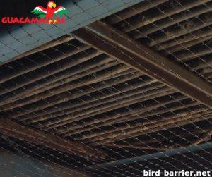 Anti bird agriculture mesh